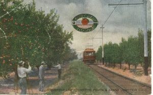 Post card of the Interurban Line through apple orchards. Photo # 1998.0023.0001, Loyd Files Research Library.
