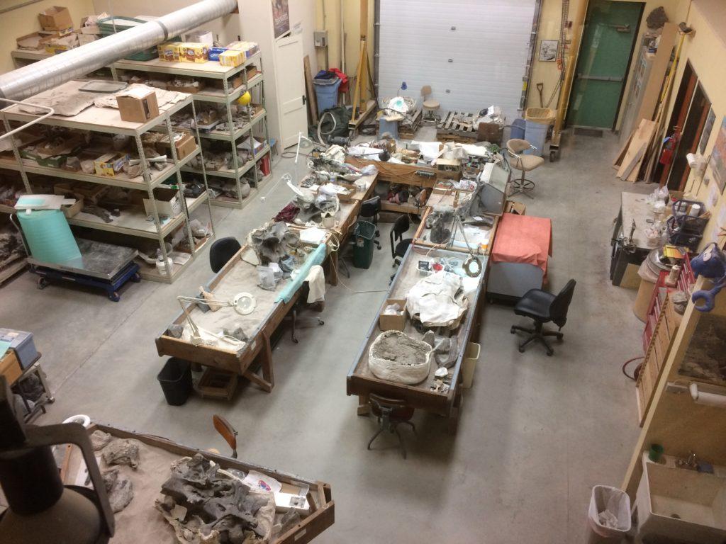 The lab at Dinosaur Journey.